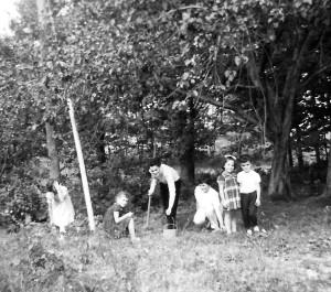 Robertson-CH-cueillette des pommettes-1958